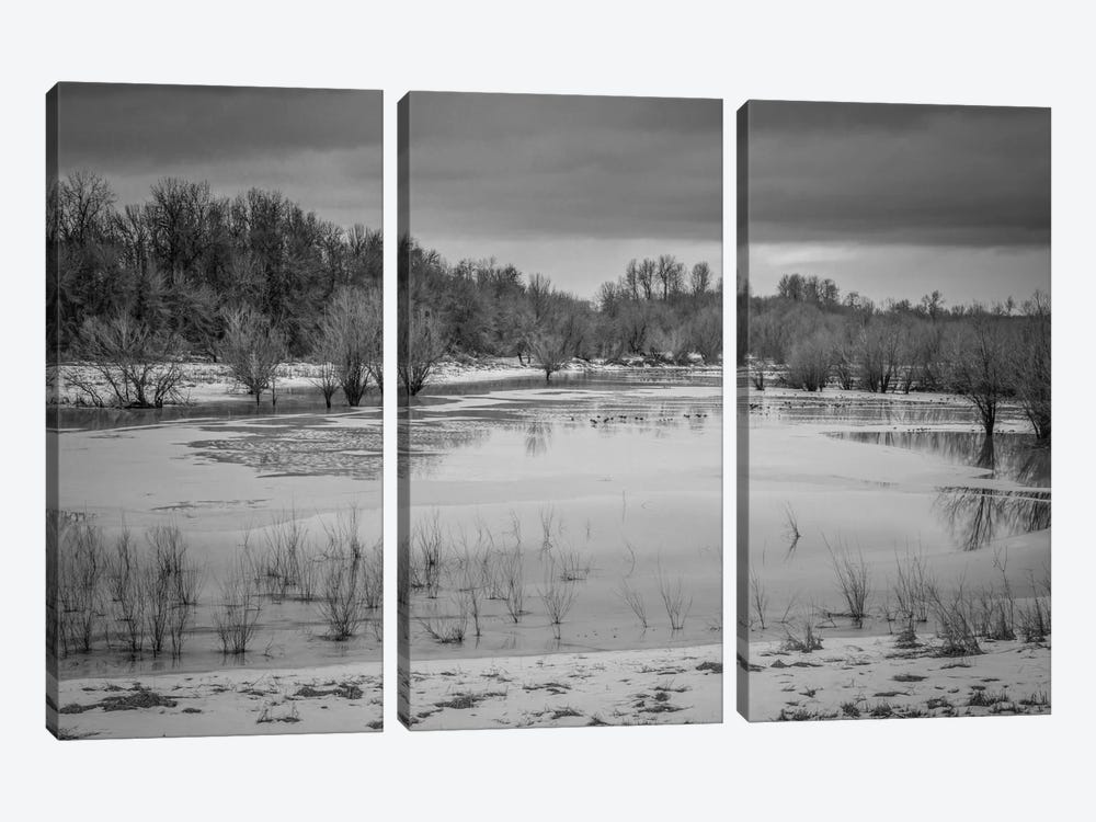 Winter Wetland II by Don Schwartz 3-piece Canvas Print