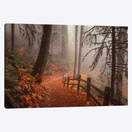 Along The Trail Canvas Print #DSC108} by Don Schwartz Canvas Artwork