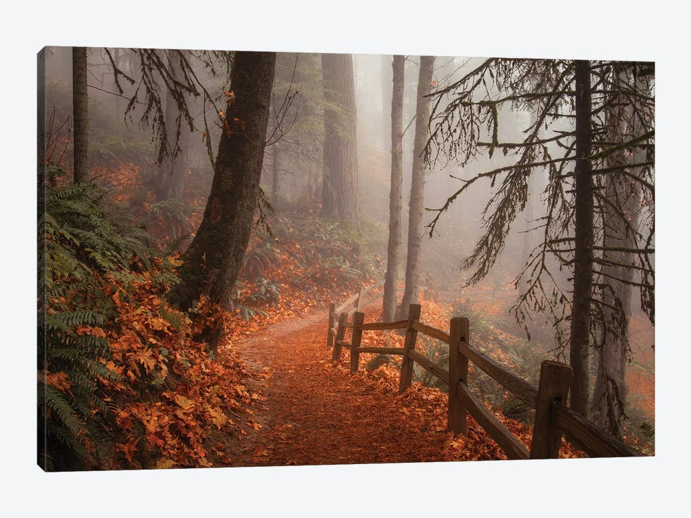 Along The Trail by Don Schwartz 1-piece Canvas Wall Art