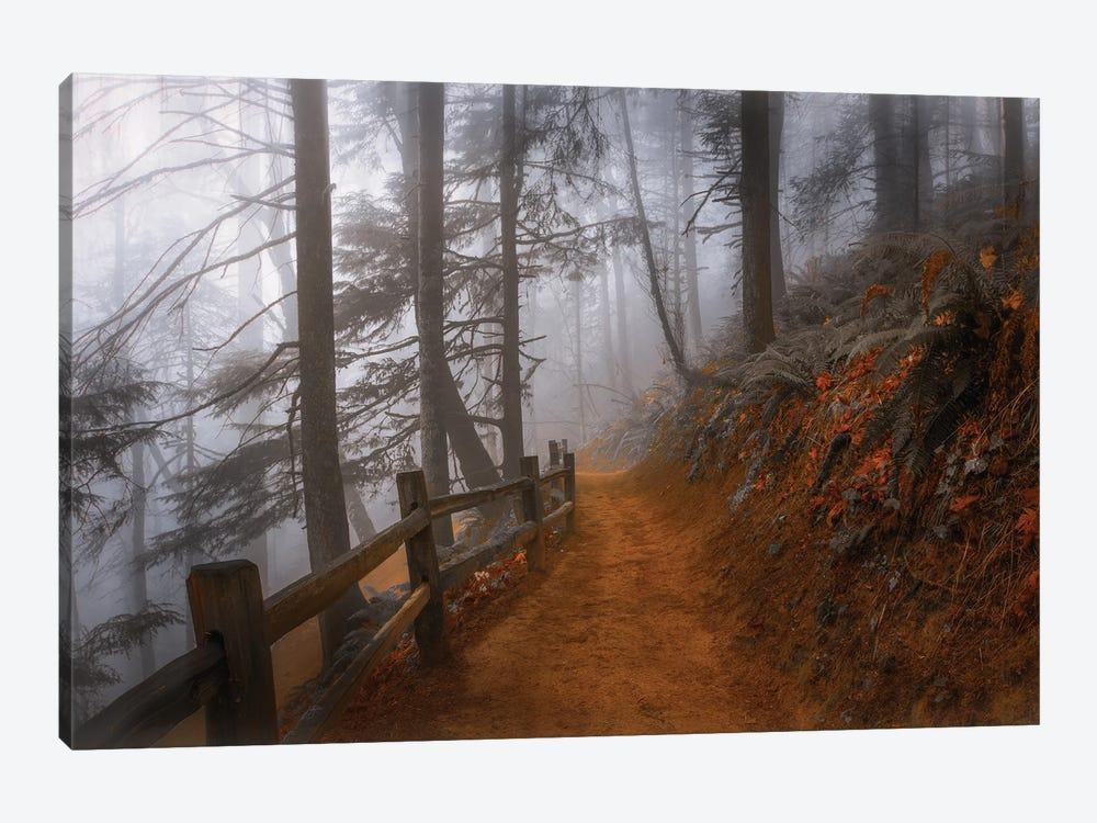 Autumn Fog In The Forest by Don Schwartz 1-piece Canvas Art