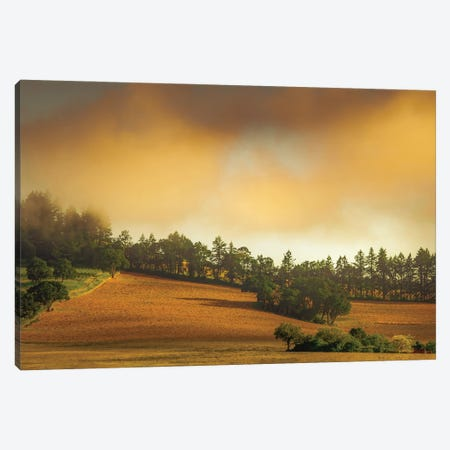 Farmhouse In The Hills Of Wine Country Canvas Print #DSC114} by Don Schwartz Canvas Wall Art