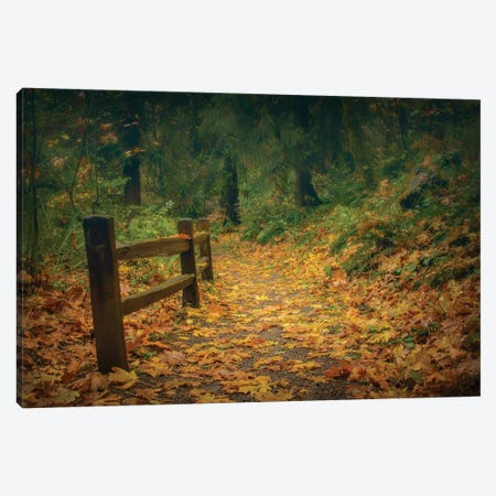 Leafy Path Canvas Print #DSC115} by Don Schwartz Canvas Artwork
