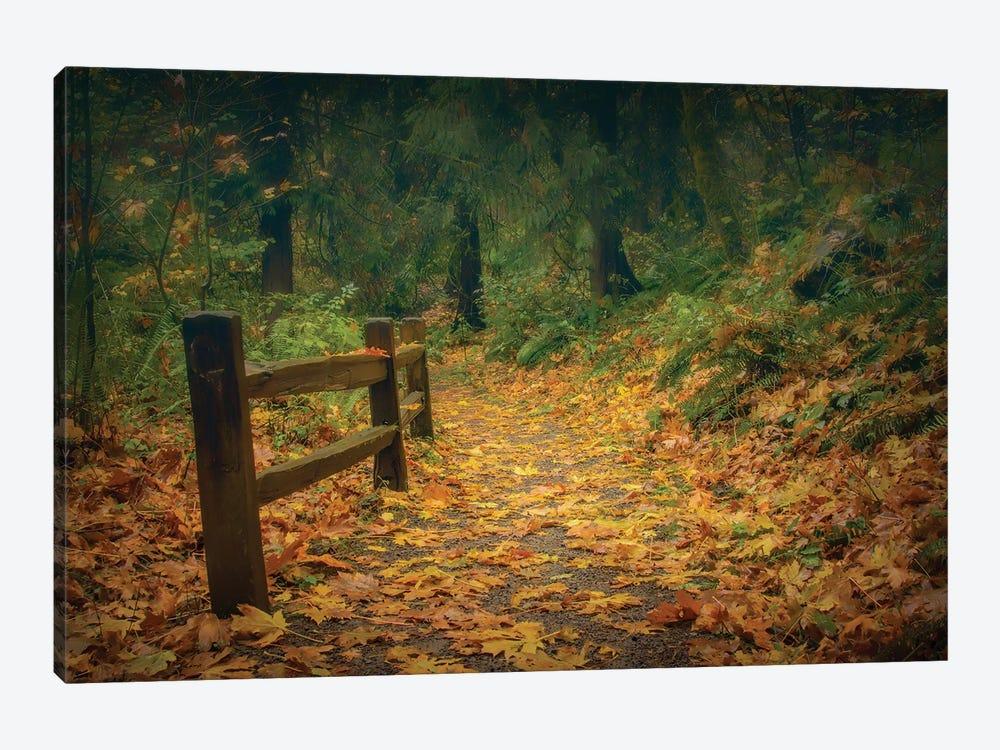Leafy Path by Don Schwartz 1-piece Canvas Artwork