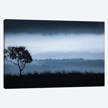 Lone Tree On Vashon Canvas Print #DSC118} by Don Schwartz Canvas Art Print