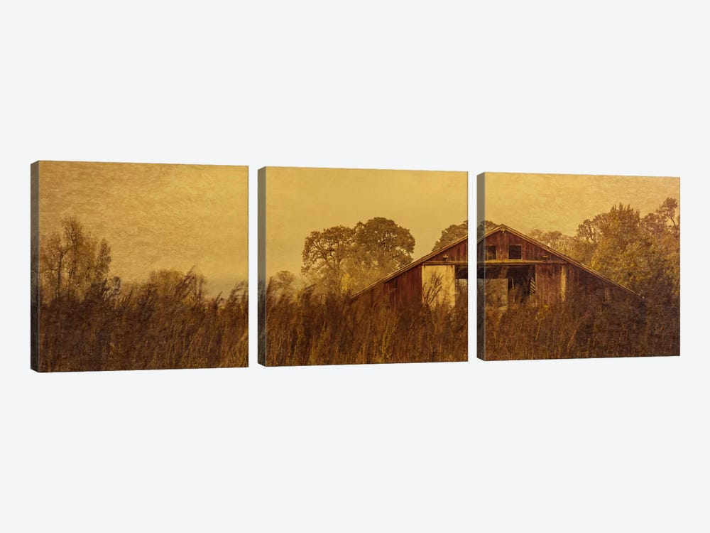 Barn Smothered By Tall Grasses by Don Schwartz 3-piece Canvas Artwork