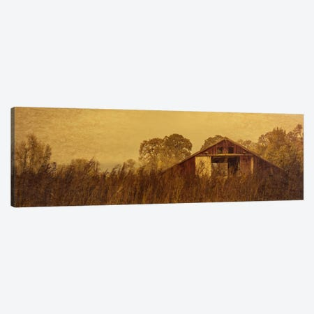 Barn Smothered By Tall Grasses Canvas Print #DSC12} by Don Schwartz Canvas Art