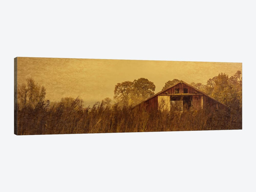 Barn Smothered By Tall Grasses by Don Schwartz 1-piece Canvas Artwork