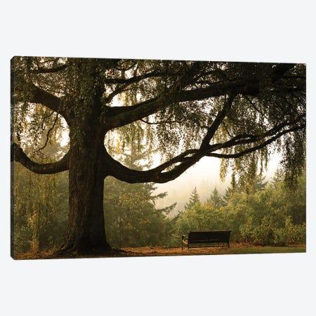 Tranquil Perch Canvas Print #DSC142} by Don Schwartz Canvas Wall Art
