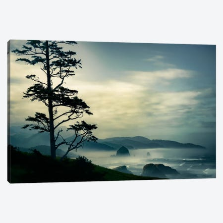 Beyond The Tree At The Overlook Canvas Print #DSC16} by Don Schwartz Canvas Print
