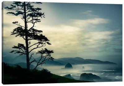 Beyond The Tree At The Overlook Canvas Art Print