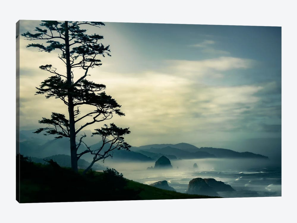 Beyond The Tree At The Overlook 1-piece Canvas Art