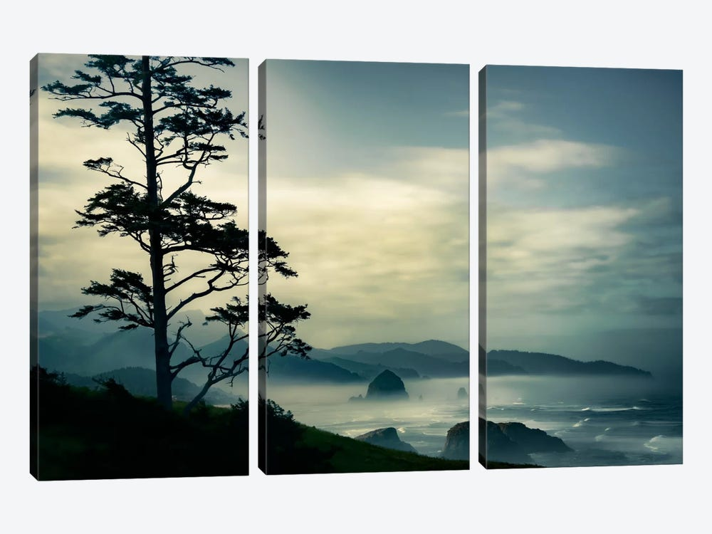 Beyond The Tree At The Overlook by Don Schwartz 3-piece Canvas Wall Art