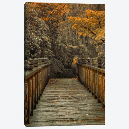 Across The Bridge Canvas Print #DSC1} by Don Schwartz Canvas Art