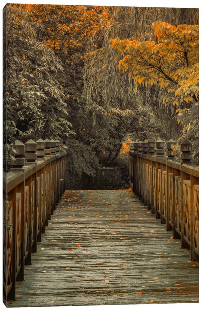 Across The Bridge Canvas Art Print