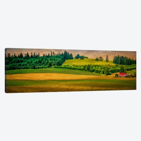 Country Meadows Canvas Print #DSC24} by Don Schwartz Canvas Wall Art