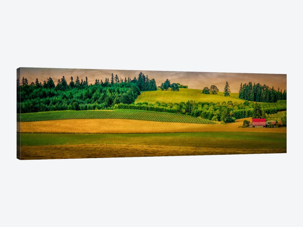 Country Meadows by Don Schwartz 1-piece Canvas Print