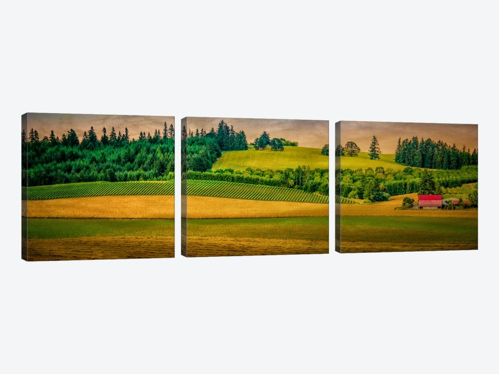 Country Meadows by Don Schwartz 3-piece Art Print