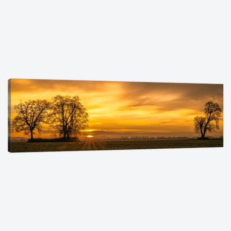 Dawn's Delight Canvas Print #DSC25} by Don Schwartz Canvas Art
