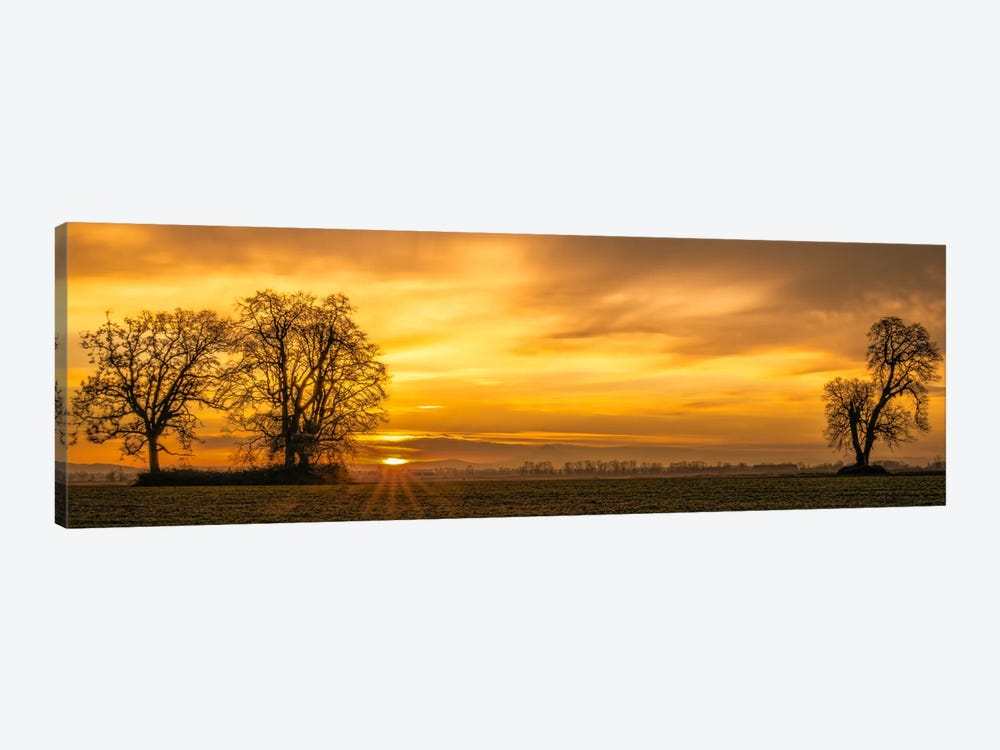 Dawn's Delight 1-piece Canvas Wall Art