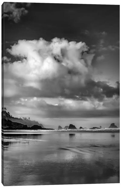 Fair Weather Morning In B&W Canvas Art Print
