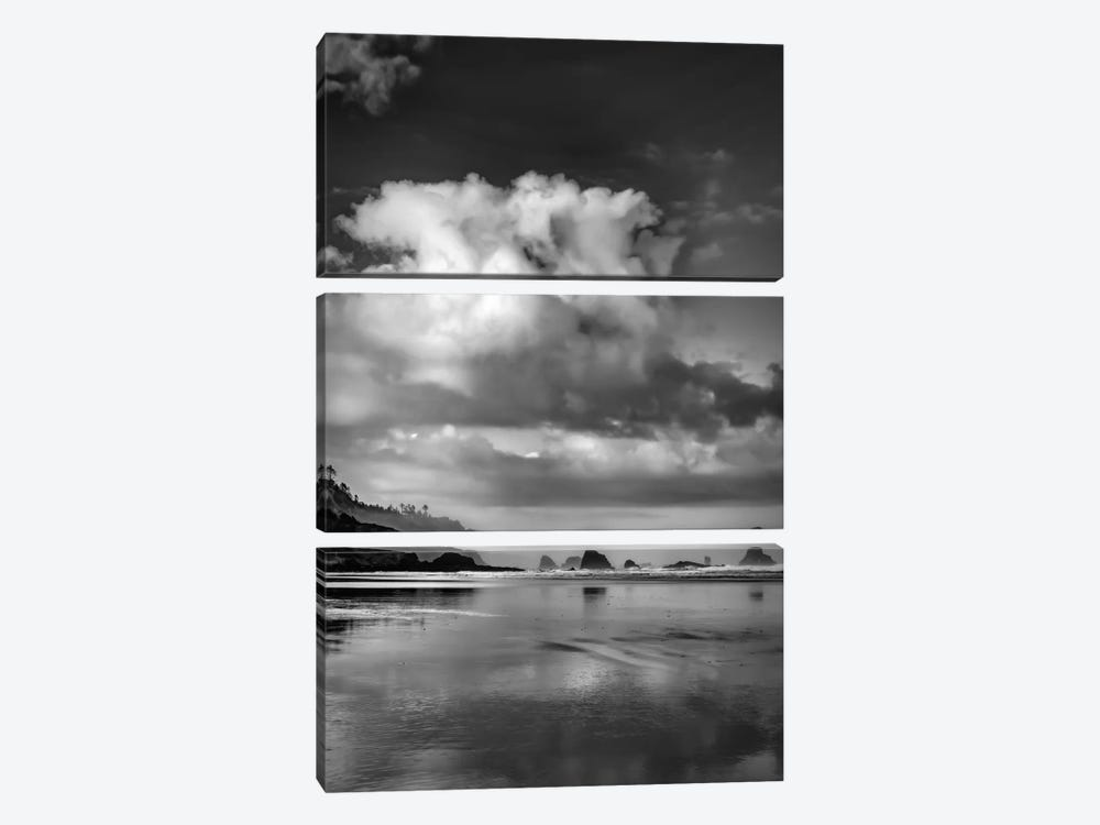 Fair Weather Morning In B&W 3-piece Canvas Art