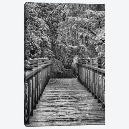 Across The Bridge In B&W Canvas Print #DSC2} by Don Schwartz Canvas Art