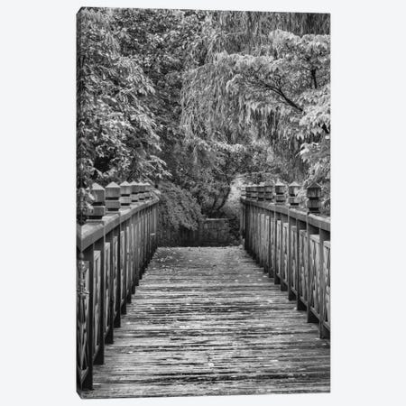 Across The Bridge In B&W Canvas Print #DSC2} by Don Schwartz Canvas Art
