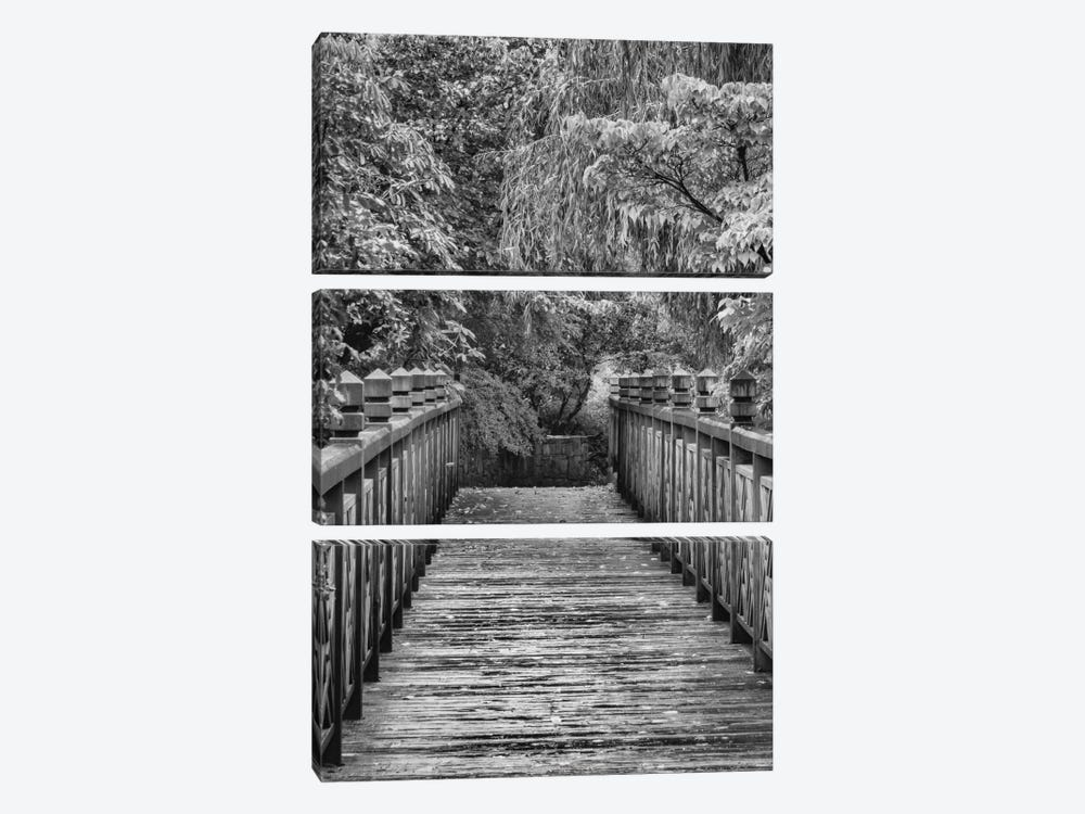 Across The Bridge In B&W by Don Schwartz 3-piece Art Print