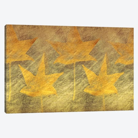 Five Golden Leaves Canvas Print #DSC30} by Don Schwartz Canvas Art