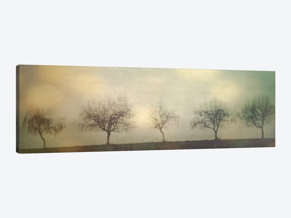 Five Trees On A Hill by Don Schwartz 1-piece Canvas Art Print