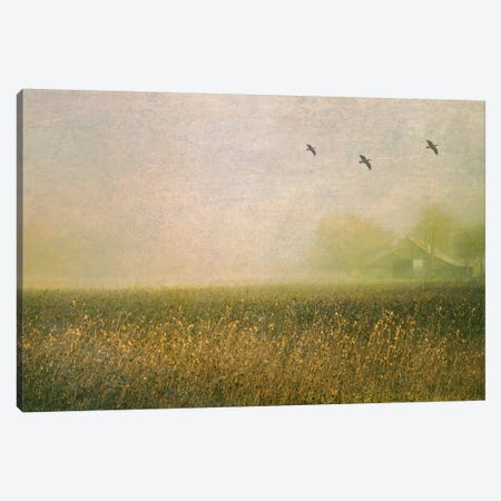 Foggy Barn Among Sunflowers Canvas Print #DSC33} by Don Schwartz Canvas Art