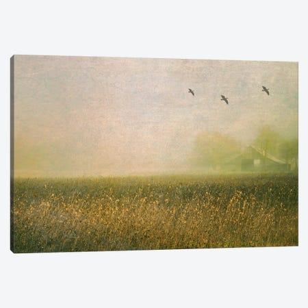 Foggy Barn Among Sunflowers Canvas Print #DSC33} by Don Schwartz Canvas Art
