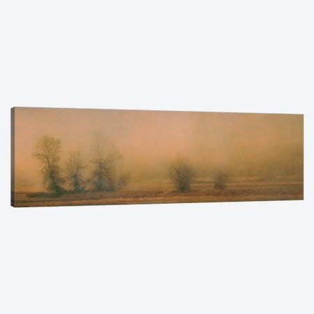 Foggy Island Canvas Print #DSC34} by Don Schwartz Canvas Print