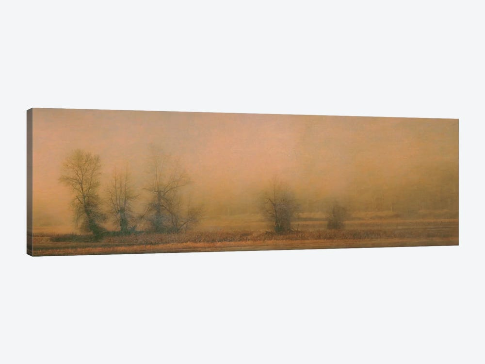 Foggy Island by Don Schwartz 1-piece Canvas Artwork