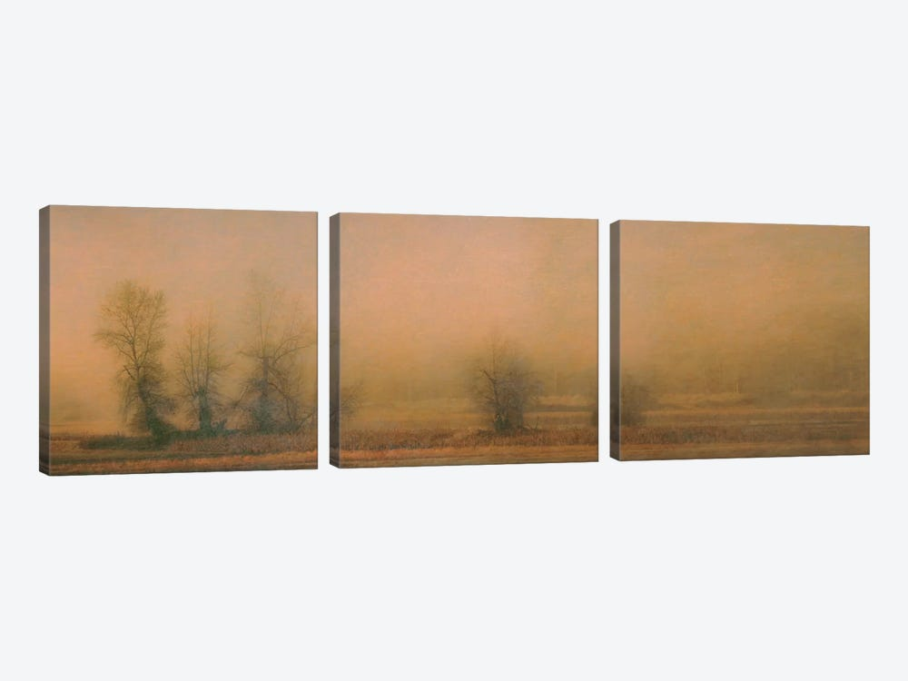 Foggy Island 3-piece Canvas Art