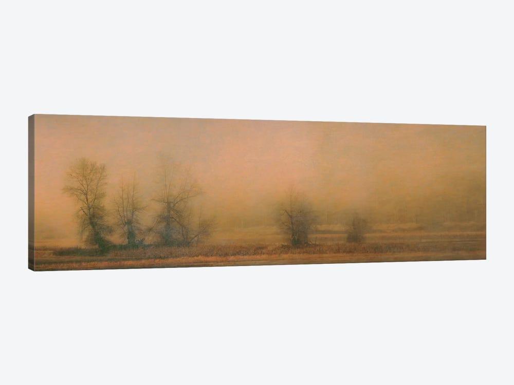 Foggy Island by Don Schwartz 1-piece Canvas Artwork