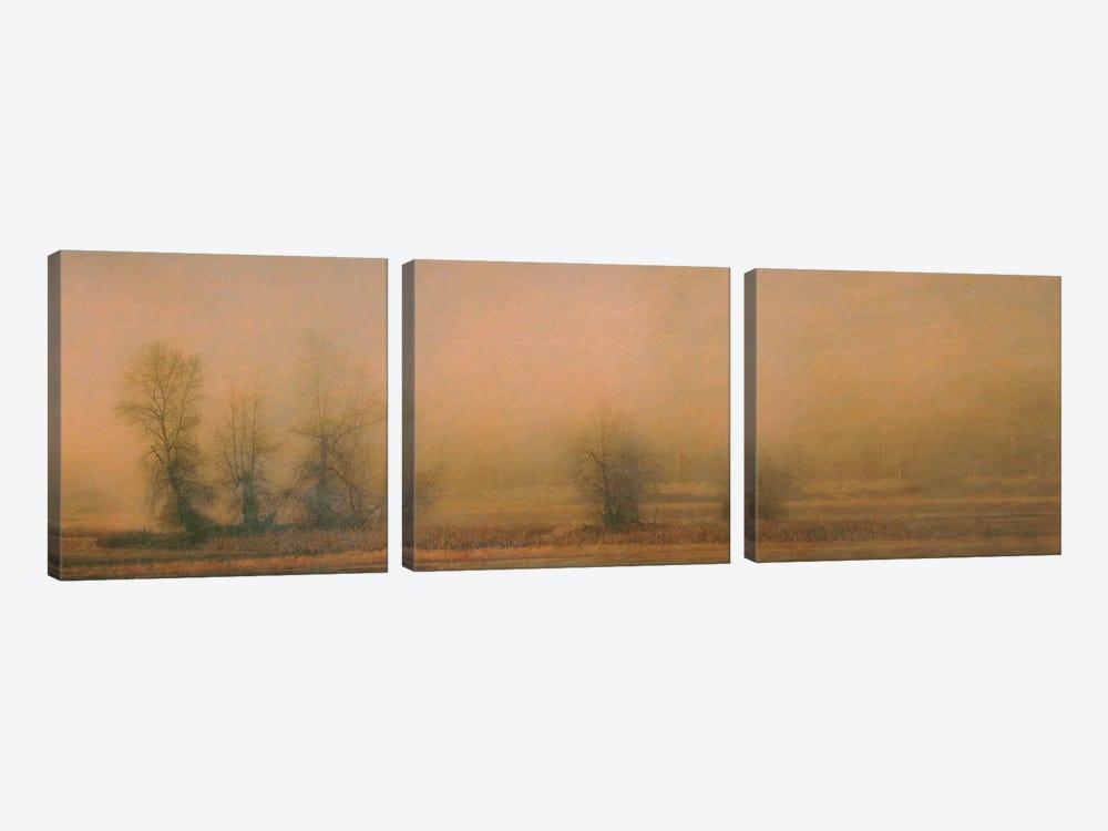 Foggy Island by Don Schwartz 3-piece Canvas Art
