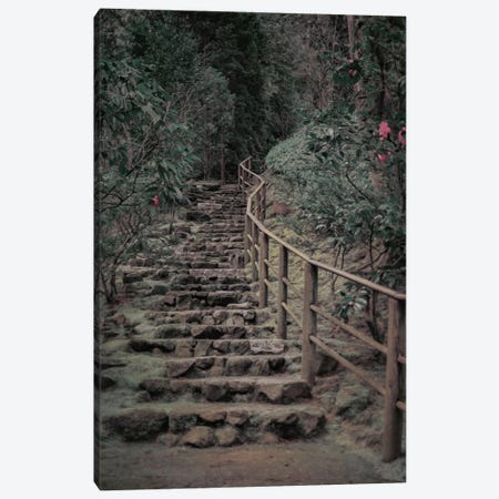 Garden Stairway Canvas Print #DSC36} by Don Schwartz Art Print