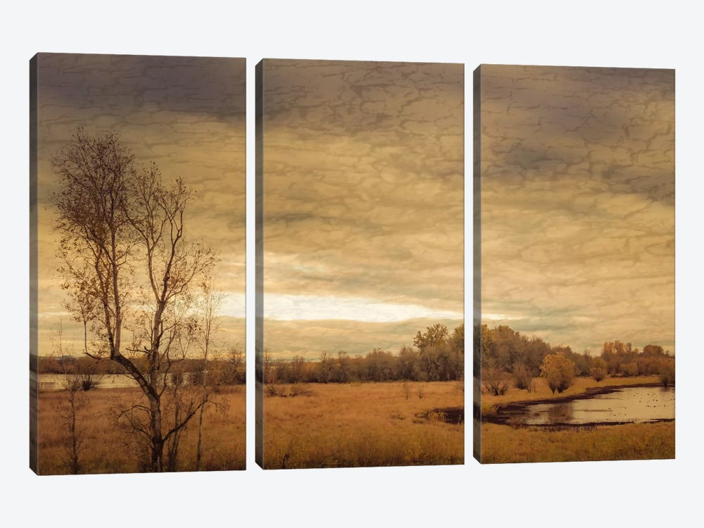 Geese On A Pond 3-piece Canvas Print
