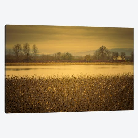 Across The Field And Pond Canvas Print #DSC3} by Don Schwartz Canvas Wall Art
