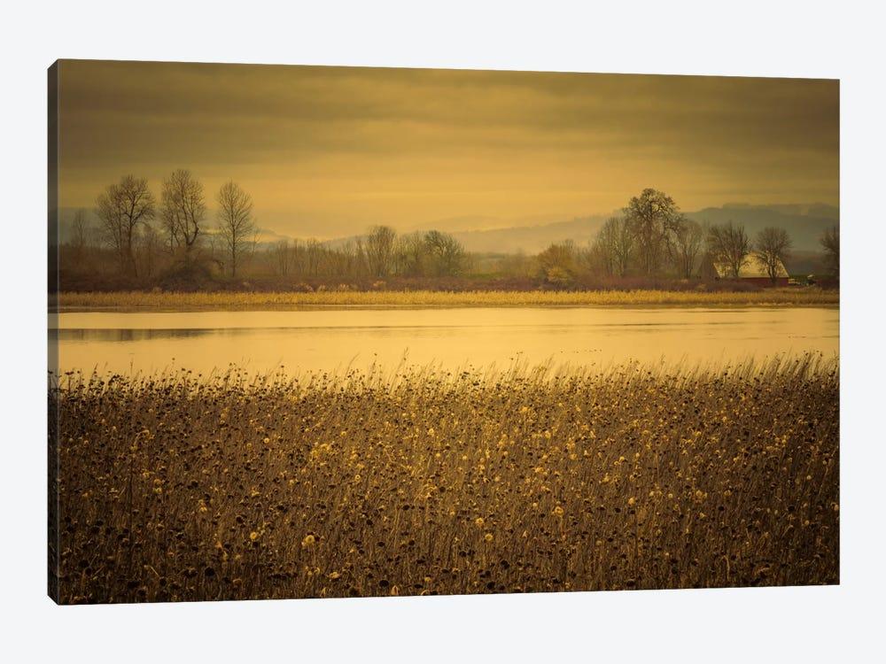 Across The Field And Pond by Don Schwartz 1-piece Canvas Artwork