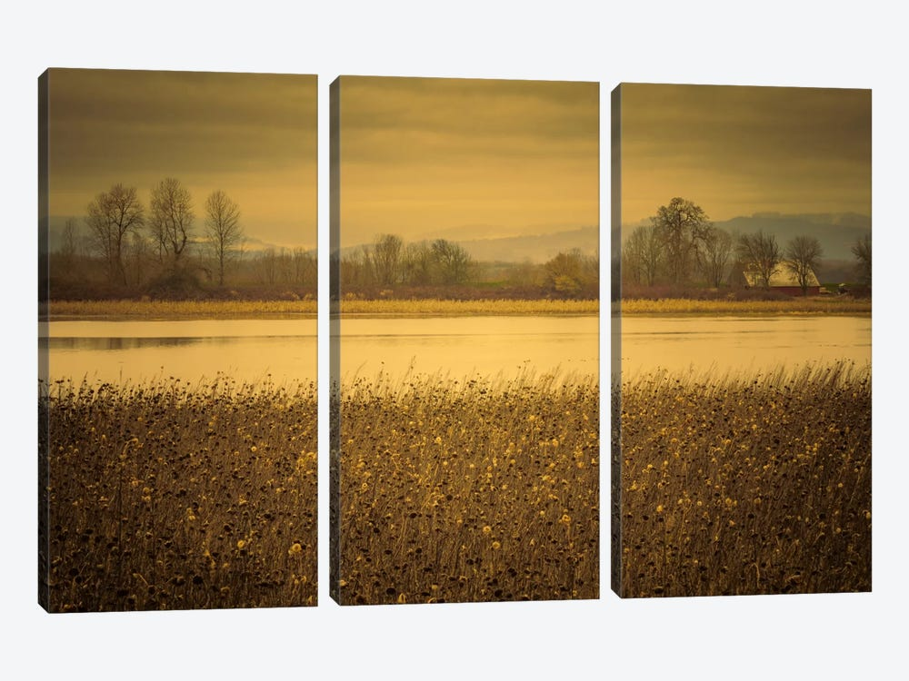 Across The Field And Pond by Don Schwartz 3-piece Canvas Art