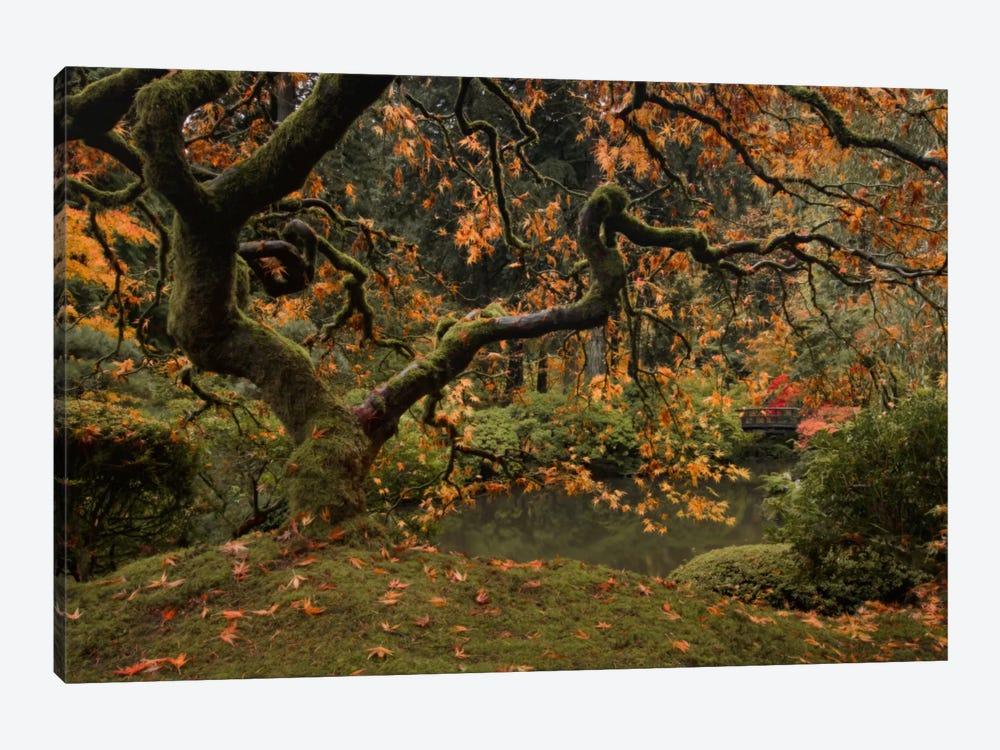 Golden Fall At The Garden by Don Schwartz 1-piece Art Print