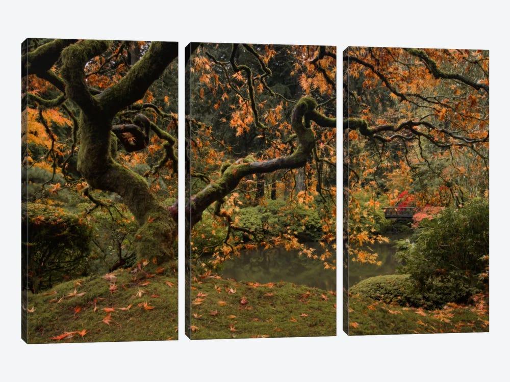 Golden Fall At The Garden by Don Schwartz 3-piece Art Print