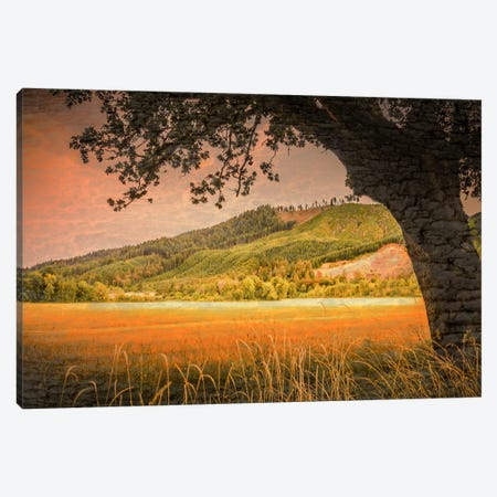 Hillside View Canvas Print #DSC42} by Don Schwartz Canvas Print