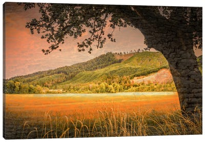 Hillside View Canvas Art Print