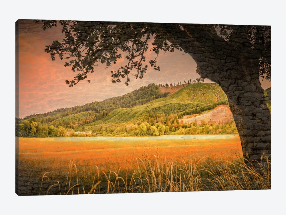 Hillside View by Don Schwartz 1-piece Canvas Print