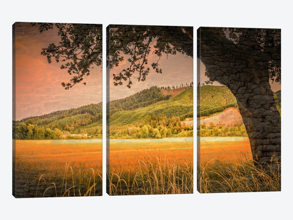 Hillside View by Don Schwartz 3-piece Canvas Art Print