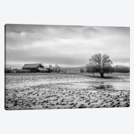 In The Snowy Pasture Canvas Print #DSC45} by Don Schwartz Canvas Art
