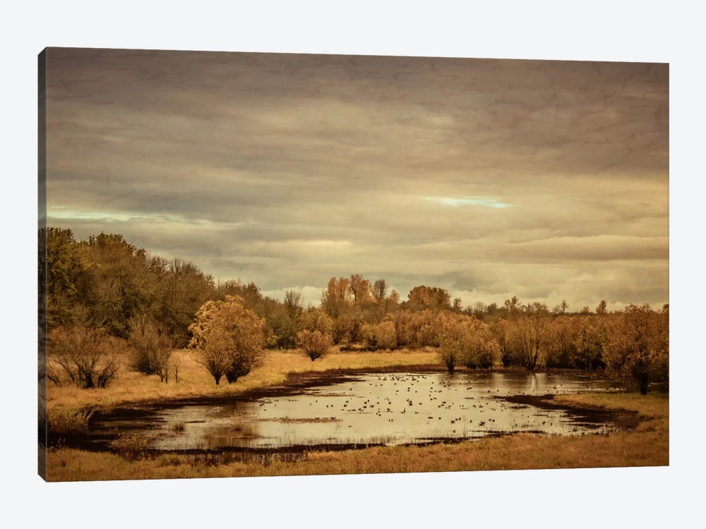 Late Autumn Pond by Don Schwartz 1-piece Canvas Print